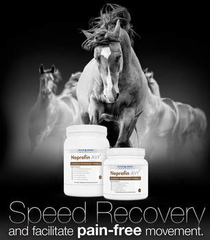 Neprofin AVF - Speed recovery and facilitate pain-free movement